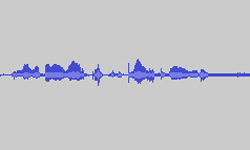 Never be rich waveform