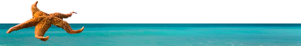 I Can Do It! At Sea Caribbean Cruise - January 28 – February 4, 2011